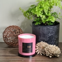 Frosted Apple & Vanilla – Modish Candle (Pink)