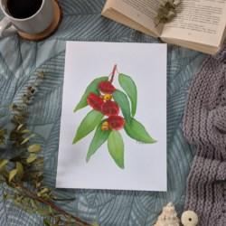 ELLIE – Eucalyptus Art Print