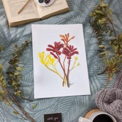 KELSIE – Kangaroo Paw Art Print