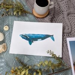 HEWEY – Humpback Whale Art Print