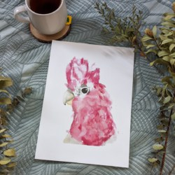 GINA – Galah Art Print