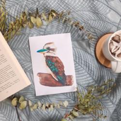 KATIE – Kookaburra Art Print