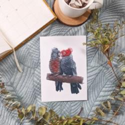 GWEN & GUS – Gang-Gang Cockatoos Art Print