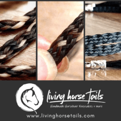 Wide Horsehair Braided Hatband with Tassles and Adjustable Waxed Cord Slider