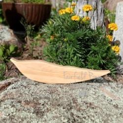 Single Gum Leaf