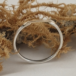 Sterling Silver Narrow Ring with 9ct Gold