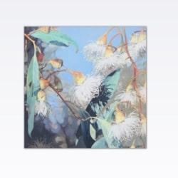 White Gum Tree Flowers Art Print
