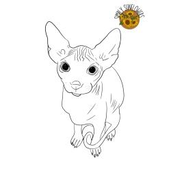 Digital Outline Portrait (Pet)