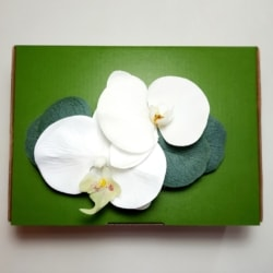 Bridal Formal Hair comb accessory Phalaenopsis Orchid
