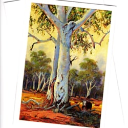 Australian landscape ghost gums greeting card