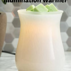 Melt Burner – Warmer Gift Pack
