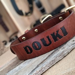 5cm wide leather collars