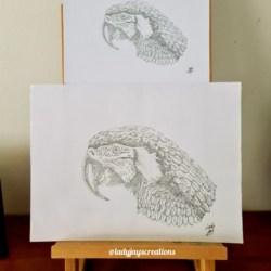 Macaw Print