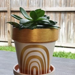 10cm painted terracotta pot with saucer, decorated with permanent vinyl. Sealed before and after art.