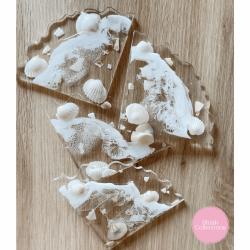Seashell Coasters x4