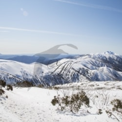 Visions from Mount Hotham | Canvas or Framed Artwork | Australian Photography