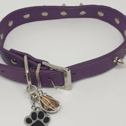 Opal Pet Collar